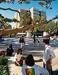 カリフォルニア大学アーバイン
