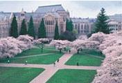 ワシントン大学風景