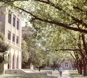 ウエストテキサスA&M大学